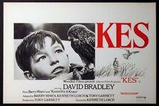 KES DAVID BRADLEY IN KEN LOACH CLASSIC 1970 BELGIAN POSTER