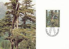 Liechtenstein Maxi Card Nr. 758 mit FDC-Stempel - Wettertannen im Sommer