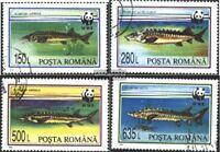 Rumänien 5034-5037 (kompl.Ausg.) gestempelt 1994 Weltweiter Naturschutz: Störe