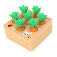 Sortieren Karotten Puzzle, Kinder Kleinkinder Vorschulerziehung Spielzeug,