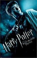 HARRY POTTER POSTER ~ HALF-BLOOD PRINCE HARRY ON GUARD