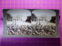 Antique Stereoscope Photograph - The White House, Washington, USA - Stereoview