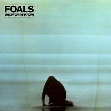 FOALS - WHAT WENT DOWN (DELUXE)  CD + DVD NEU