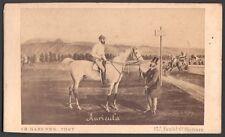 Hippisme. Cheval de course - Auricula. Photographe Barenne. Vers 1870. CDV