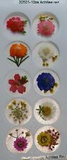 Achillea Red Real Pressed Flower Craft Stickers