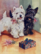 WEST HIGHLAND WHITE TERRIER WESTIE & SCOTTIE DOG WITH GIFT GREETINGS NOTE CARD