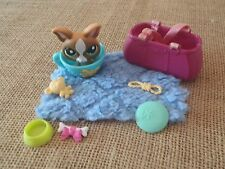Littlest Pet Shop Teacup Chihuahua Brown Green Eyes #1568 Accessories Lot C10