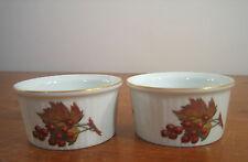Royal Worcester Evesham Gold 2 Ramekins Czech England Fine Porcelain RAMM8