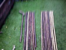 More details for hazel walking stick shanks