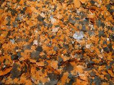 100 grams of Cichlid Flakes