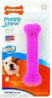 Nylabone Puppy Chew Teething Soft Bone Chicken Petite Pink