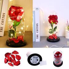 Konservierte Infinity Rose in Glasglocke Die Schöne und das Biest Liebe Geschenk