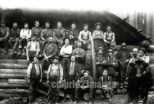 OR WA Pacific NW BW PHOTO OREGON WASH Logging Crew Cow