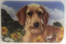 Wire Haired Dachshund Glass Cutting Board, Multicolor, 8 in X 11 3/4 in