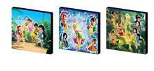 Disney Fairies Set B tela pared arte plaques/pictures Tinkerbell