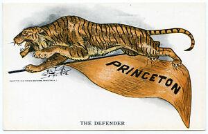 "Princeton University Tiger ""The Defender"" Spirit Postcard"