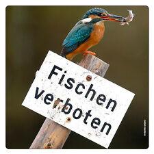 Kühlschrank - Magnet: Zum Glück kann der Eisvogel nicht lesen - kingfisher