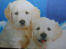 Icono! Labrador Cachorros! 3d Foto! Poster! Lenticular! animales! Perro! Arte!