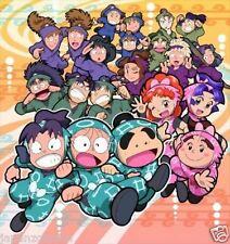 Used DS  Nintama Rantarou: Gakunen Taikousen Puzzle  NINTENDO JAPANESE IMPORT