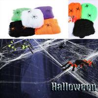 1x Bag Stretchable Spider Web Halloween Webbing Cobweb Prop white black purple