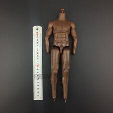 Kodoxo Body Model Toy1/6th Male Figure Pvc Coffee body Fit For male Head