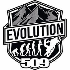"""509 STICKER SNOWMOBILE GARAGE WINDSHIELD DECAL VINYL EVOLUTION 4""""X4"""" (EACH)"""