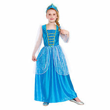 Princess Synthetic Fancy Dresses for Girls