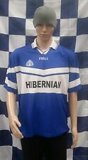 Hibernian Bank (Now Aviva) Match Worn No.10 Gaelic Football Jersey (Adult Large)
