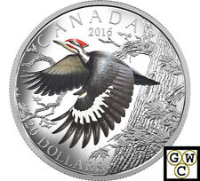 2016Pileated Woodpecker-Migratory Birds Convention'$20Silver1oz .9999(NT)(17911)