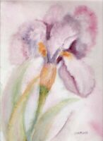 Art PRETTY FLORAL IRIS FLOWER PAINTING WATERCOLOR PINK GREEN PURPLE GREEN