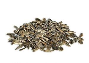 Organic Roasted & Salted Sunflower Seeds In Shell Kosher Vegan F&F
