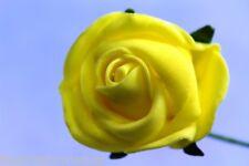 Wedding Flowers Cake Topper Rose & Bear Grass & Crystal Beads - all colours