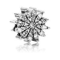Pandora Charm Eiskristall 791764CZ Sterling Silber Bead Schmuck Zirkonia Element