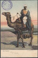 Österreich 1905 alte Ägyptische Bildpostkarte