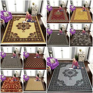 Luxury Vintage Large Traditional Rug Bedroom Living Room Area Rug Hallway Runner