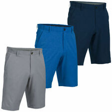 Patternless Loose Fit Big & Tall Flat Front Shorts for Men