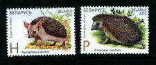 2012. Belarus. Joint issue. Kazakhstan-Belarus. ANIMALS.Hedgehogs. Set. MNH