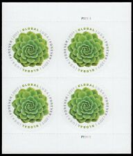 USA Sc. 5198 ($1.15) Global Succulent 2017 MNH plate block