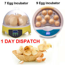 Fully Automatic Digital Egg Incubator Temperature Control Poultry Mini Hatcher