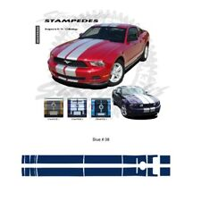 Ford Mustang 2010-2012 Ralley Stripes Graphic Kit - Blue
