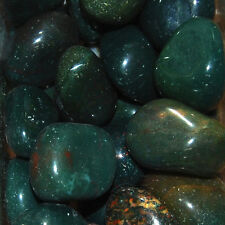1/4 LB BULK Medium Bloodstone Tumbled Stone Wholesale Natural Crystal Healing