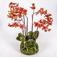 Kunst Orchidee Phalaenopsis PABLA im Moosballen, orange-rosa, 80cm - künstlich