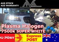 H1 Xenon White Plasma Halogen bulbs 12V 55w Headlight Globes for DC5 CL7 CL9