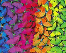 100% Cotton Fabric rainbow  Butterfly