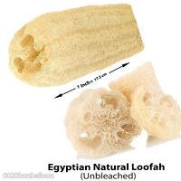 "Egyptian 7"" Organic Natural Scrubber shower Sponge Loofah Lofa Loofa Exfoliation"