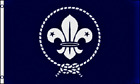 Boy Scouts Of America World Scout Flag 3