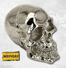 tete de mort crane garde boue moto skull bobber chopper ornament chrome fender