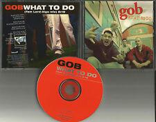 GOB w/ TOM of SUM 41 What to Do ULTRA RARE MIX PROMO DJ CD Single 1999 MINT USA