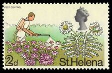 ST. HELENA 212 (SG229) - Pest Control and Scrubweed Plant (pa26533)