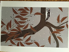 CHARLEY CHARLES HARPER Upside Downy New  Art  print  wood pecker bird